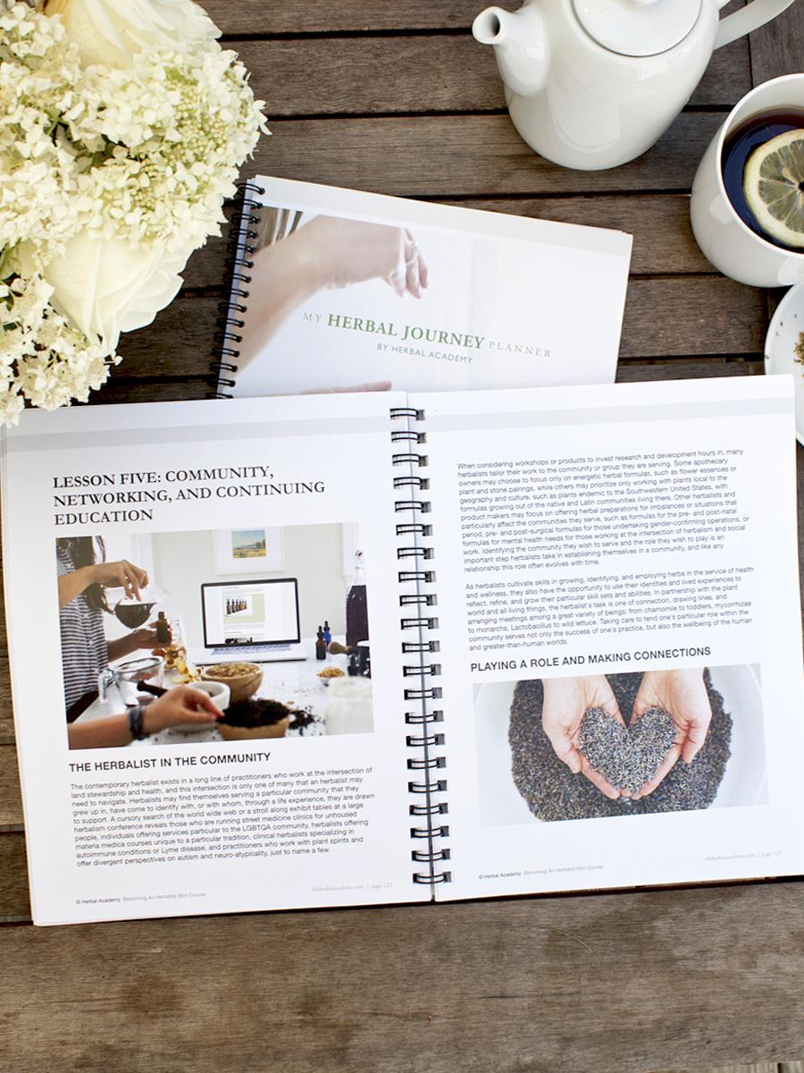 Herbal Journey Planner – activities to inspire your herbal journey