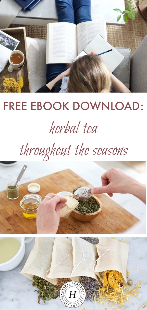 Free Ebook Download: Herbal Tea Throughout The Seasons | Herbal Academy | Whether you already have a daily tea ritual or you're looking to start one, our newest FREE ebook will show you the way with the help of 12 tea recipes, one for every month of the year!