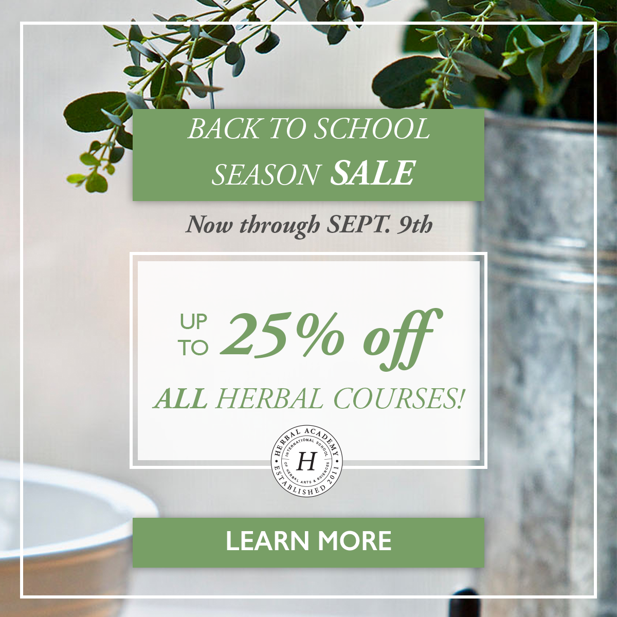 8 Of Your Most Frequently Asked Herbal Questions, Answered | Herbal Academy | It's Back to School season here at the Academy, and we're answering some of your most FAQ in this Q&A post!