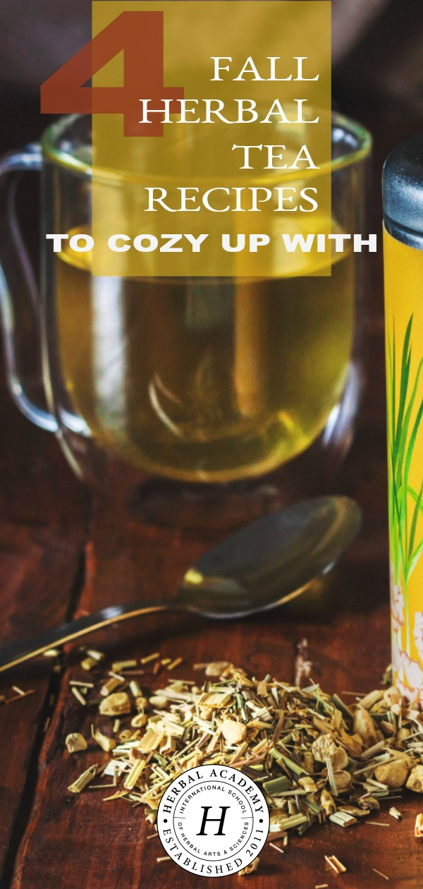 4 Fall Herbal Tea Recipes To Cozy Up With | Herbal Academy | In this article, we're sharing four flavorful fall herbal tea recipes to cozy up with during the cooler months of the year.
