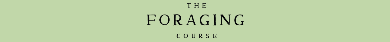 The Foraging Course by Herbal Academy
