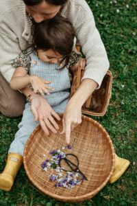 Family Herbalist Path Package by Herbal Academy - become a home herbalist