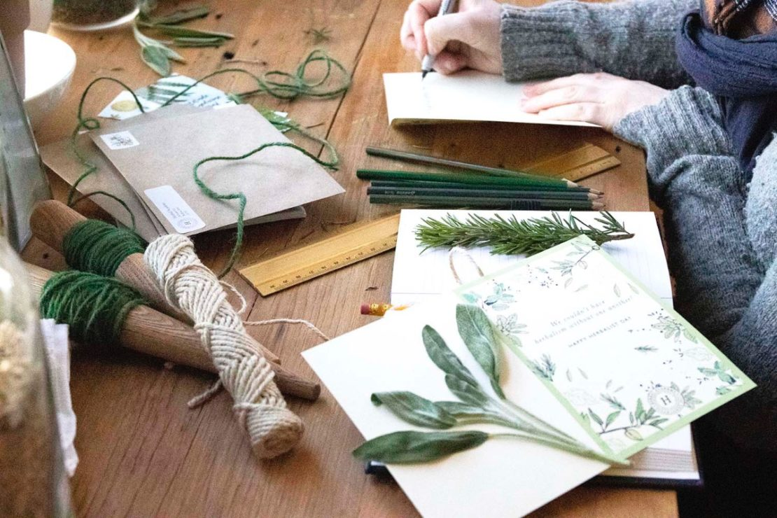How To Honor Herbal Teachers With Your Stories | Herbal Academy | Herbalist Day is April 17th, and one way you can honor herbal teachers is by sharing your stories with the person who touched and inspired you.