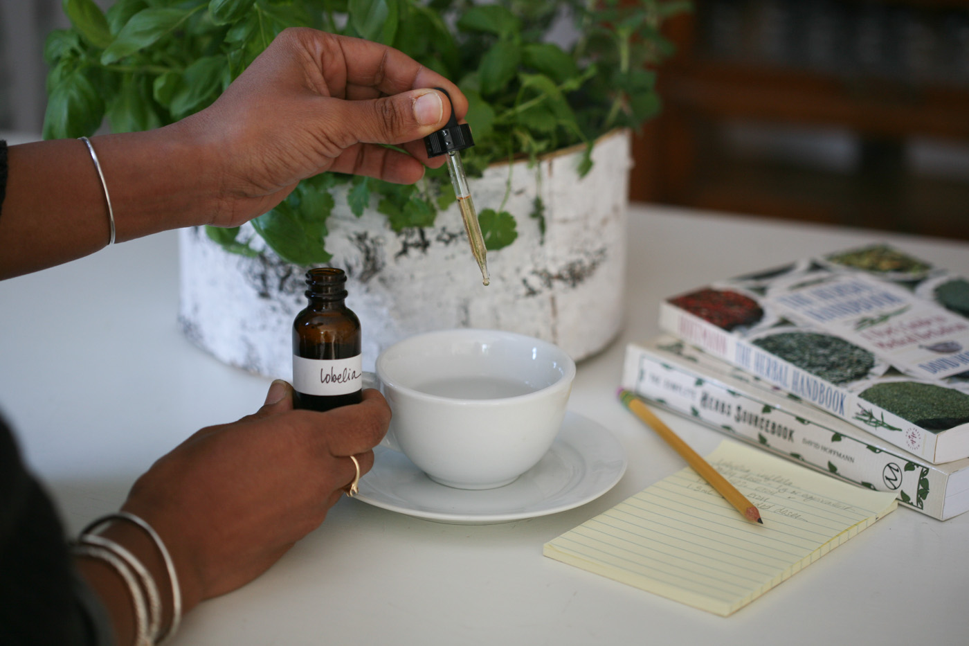 How To Use Low-Dose Botanicals Like Lobelia Safely   Herbal Academy   Learn what low-dose botanicals are and proper ways to use them safely. We'll look specifically at the herb lobelia (Lobelia inflata).