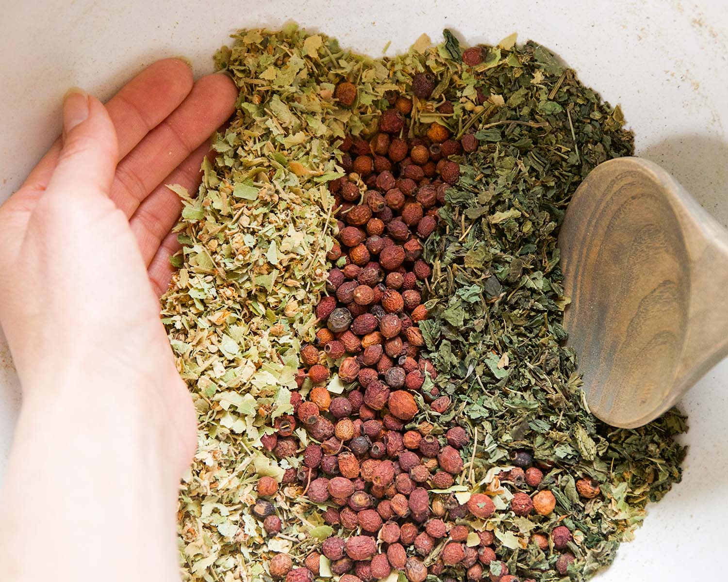 Spiritual Heart Medicine: How To Use Herbs for Emotional Self-Care | Herbal Academy | Tending to emotional self-care, or the spiritual heart, is necessary for overall vitality. Here are some herbs and recipes to help you get started.