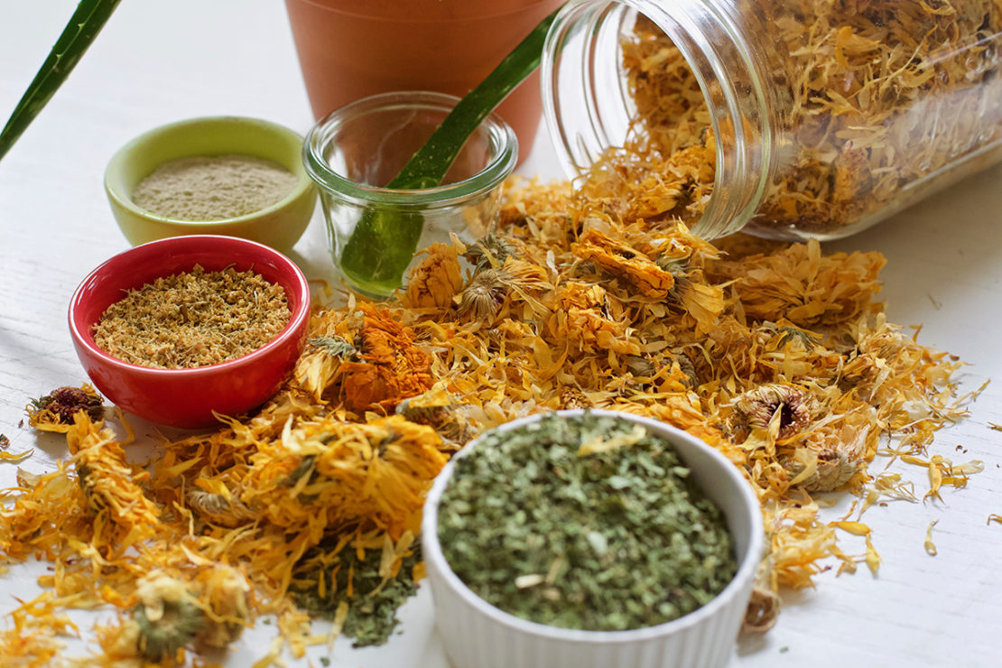 How To Manage Burns Naturally From Start To Finish | Herbal Academy | Burns are a common ailment that many will experience at least once in life. Learn how to manage burns naturally the next time you experience a burn.