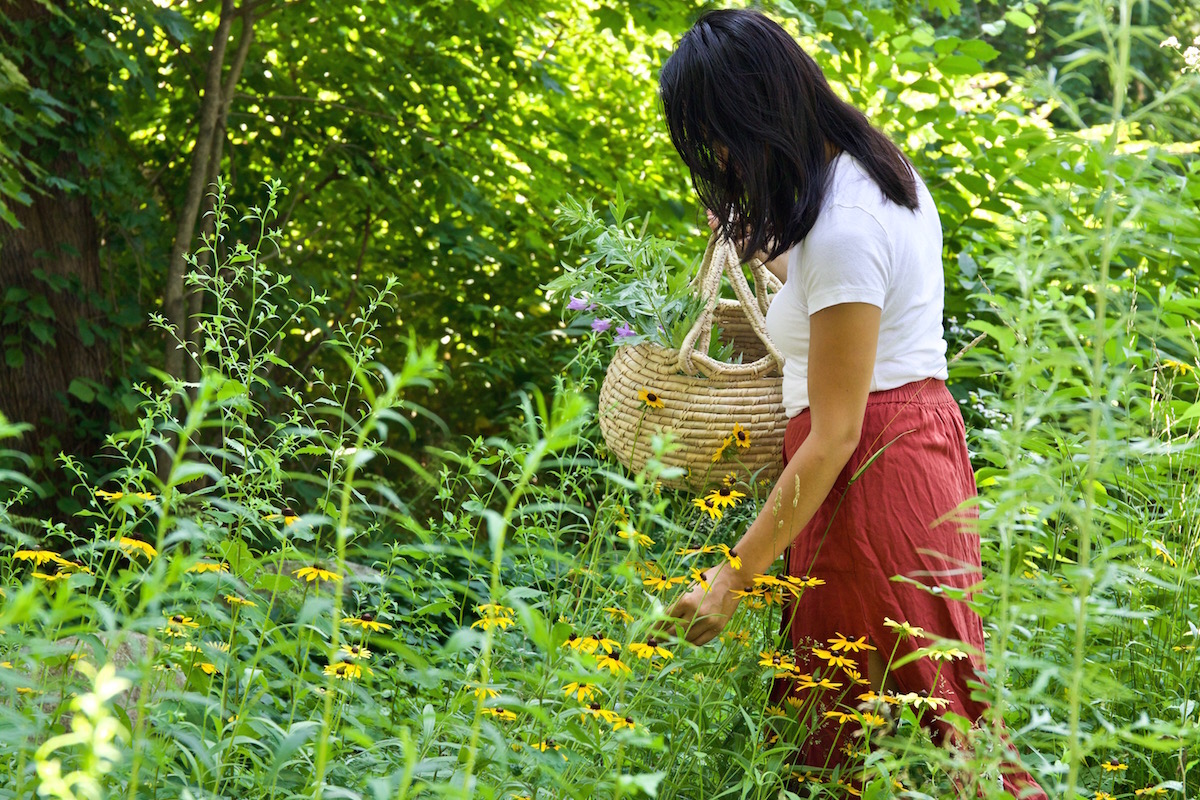 Making Herbal Preparations 101 Course with Herbal Academy
