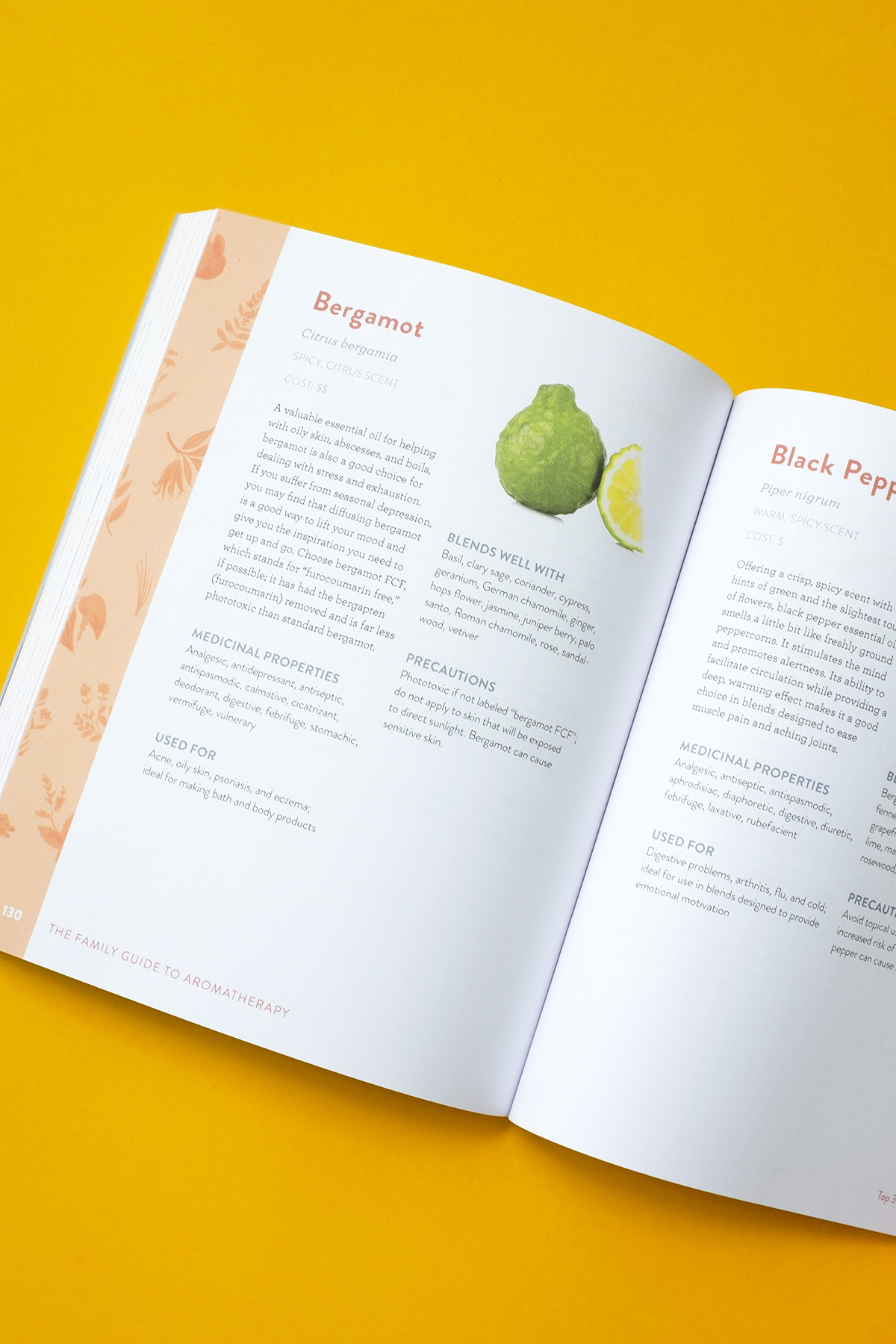 An Aromatherapy Guide for Infants to Elders   Herbal Academy   Aromatherapist Erika Galentin shares how to use essential oils safely and effectively through all stages of life in her new aromatherapy guide book!