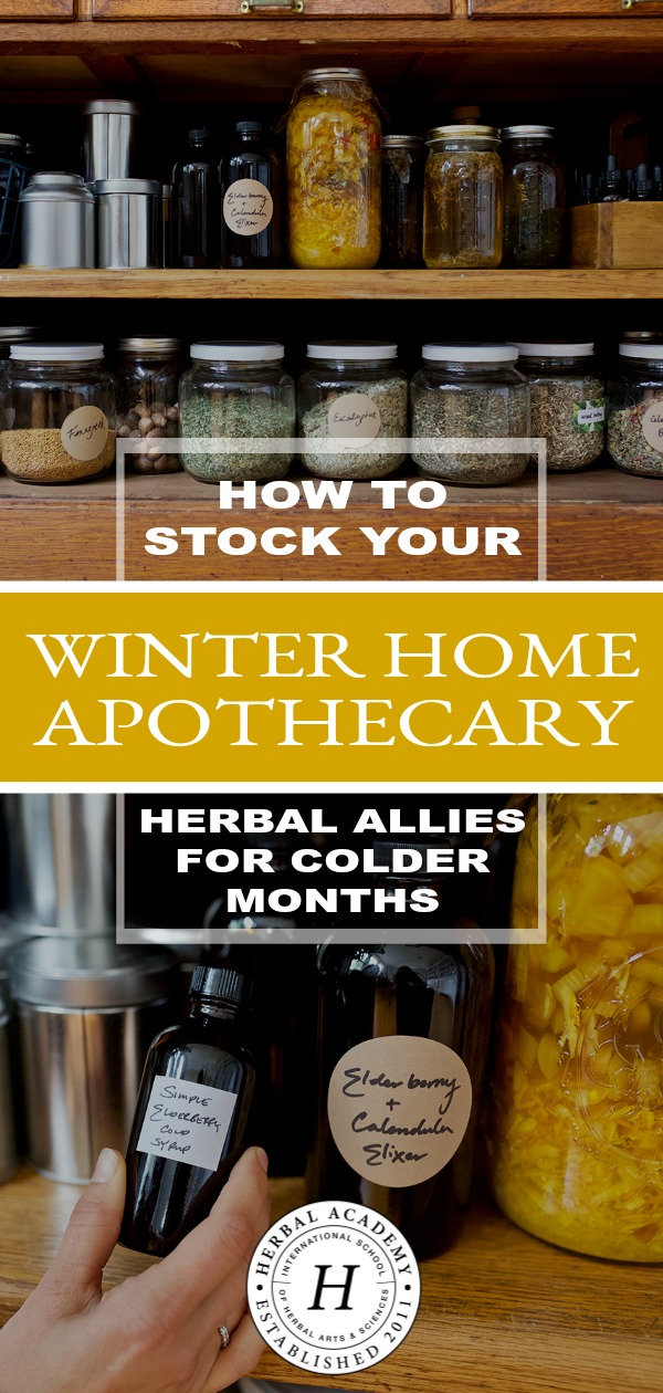 How To Stock Your Winter Home Apothecary: Herbal Allies For Colder Months | Herbal Academy | Learn how to stock your winter home apothecary with herbal allies for colder months. When illness arrives, you'll be prepared with seasonal herbal support!