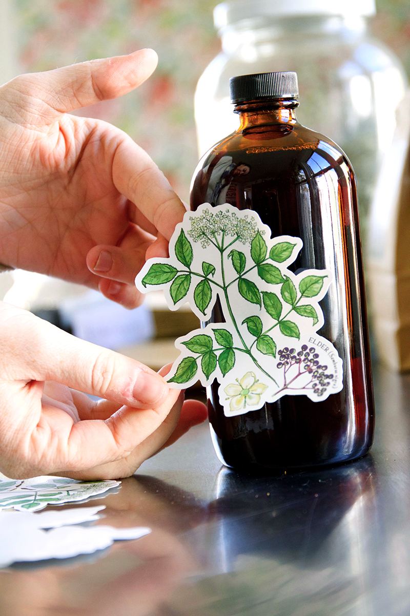 Herbal sticker set, one of our favorite gifts for herbalists