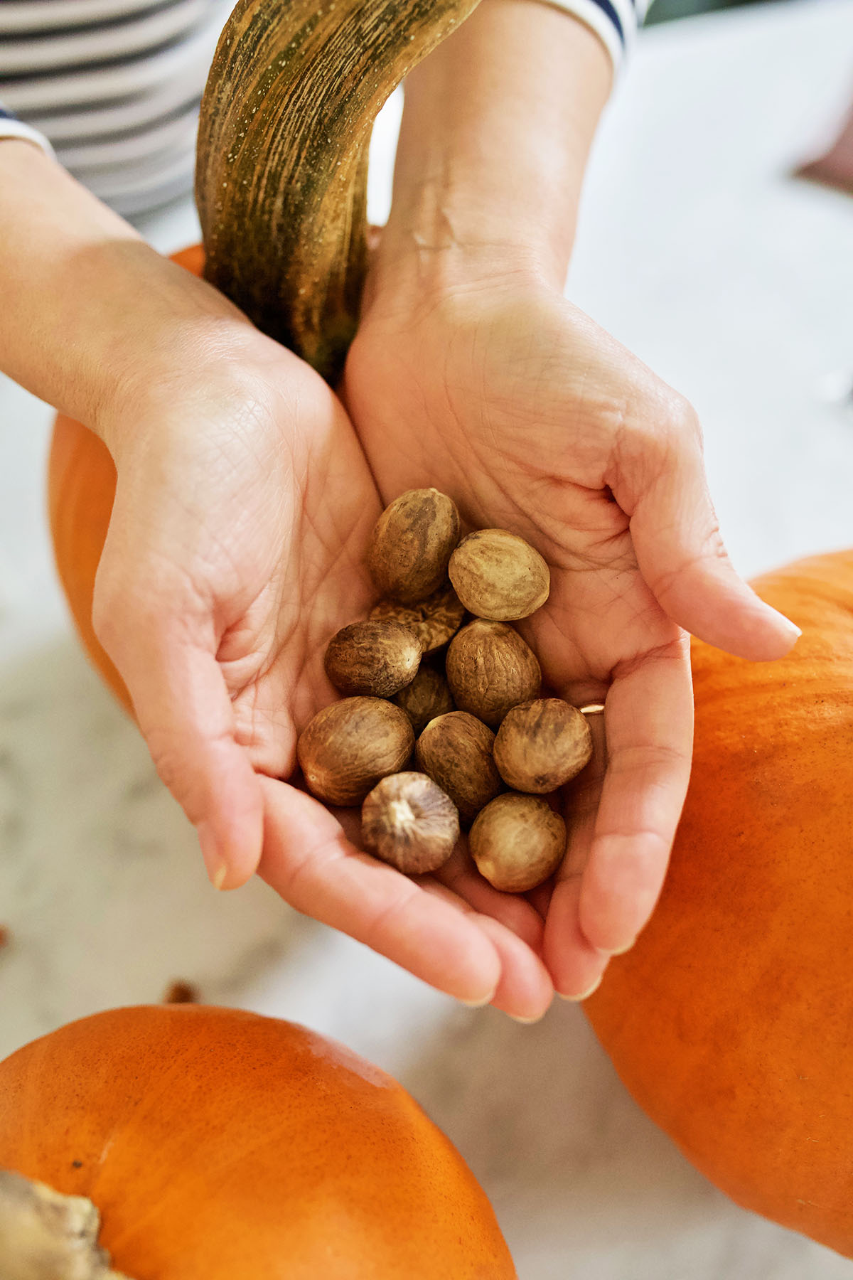 Pumpkin Spice Wellness Benefits You Should Know About | Herbal Academy | Fall equals pumpkin spice season! Learn about pumpkin spice wellness benefits and how to bring that true pumpkin spice flavor into your everyday life.
