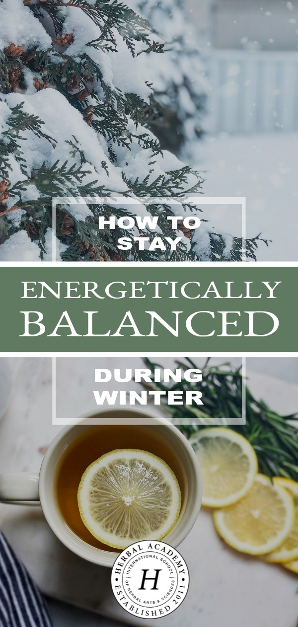 How To Stay Energetically Balanced During Winter | Herbal Academy | Stay energetically balanced during winter with foods, herbs, and lifestyle choices that will help you stay well and vibrant through the season ahead.
