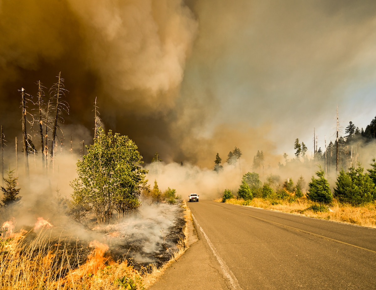 car driving down road while grass burns and smoke fills air