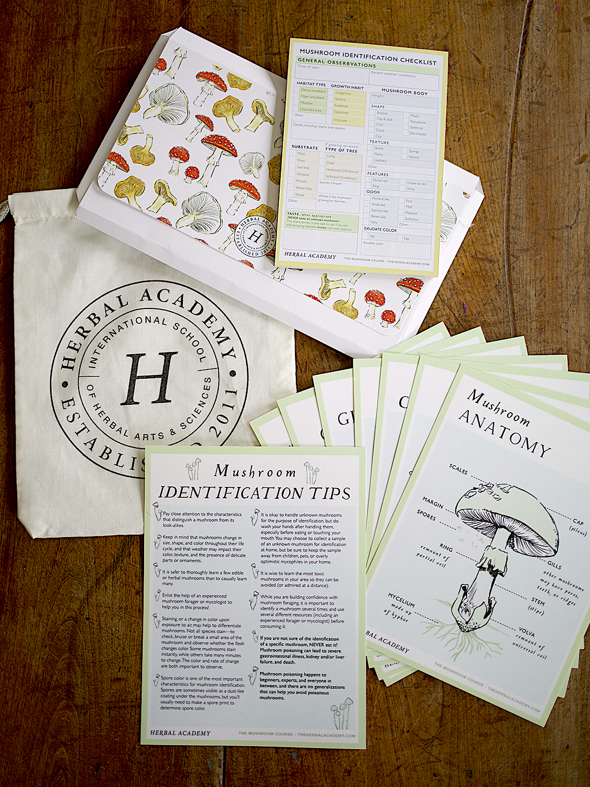 Mushroom Foraging Kit by Herbal Academy - mushroom identification