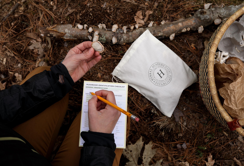The Mushroom Course - mushroom foraging kitThe Mushroom Course - mushroom foraging kit