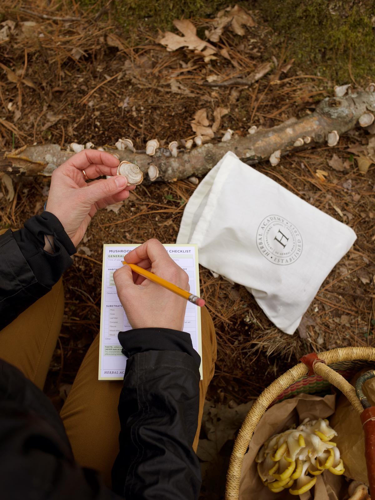 The Mushroom Foraging Kit by Herbal Academy 4