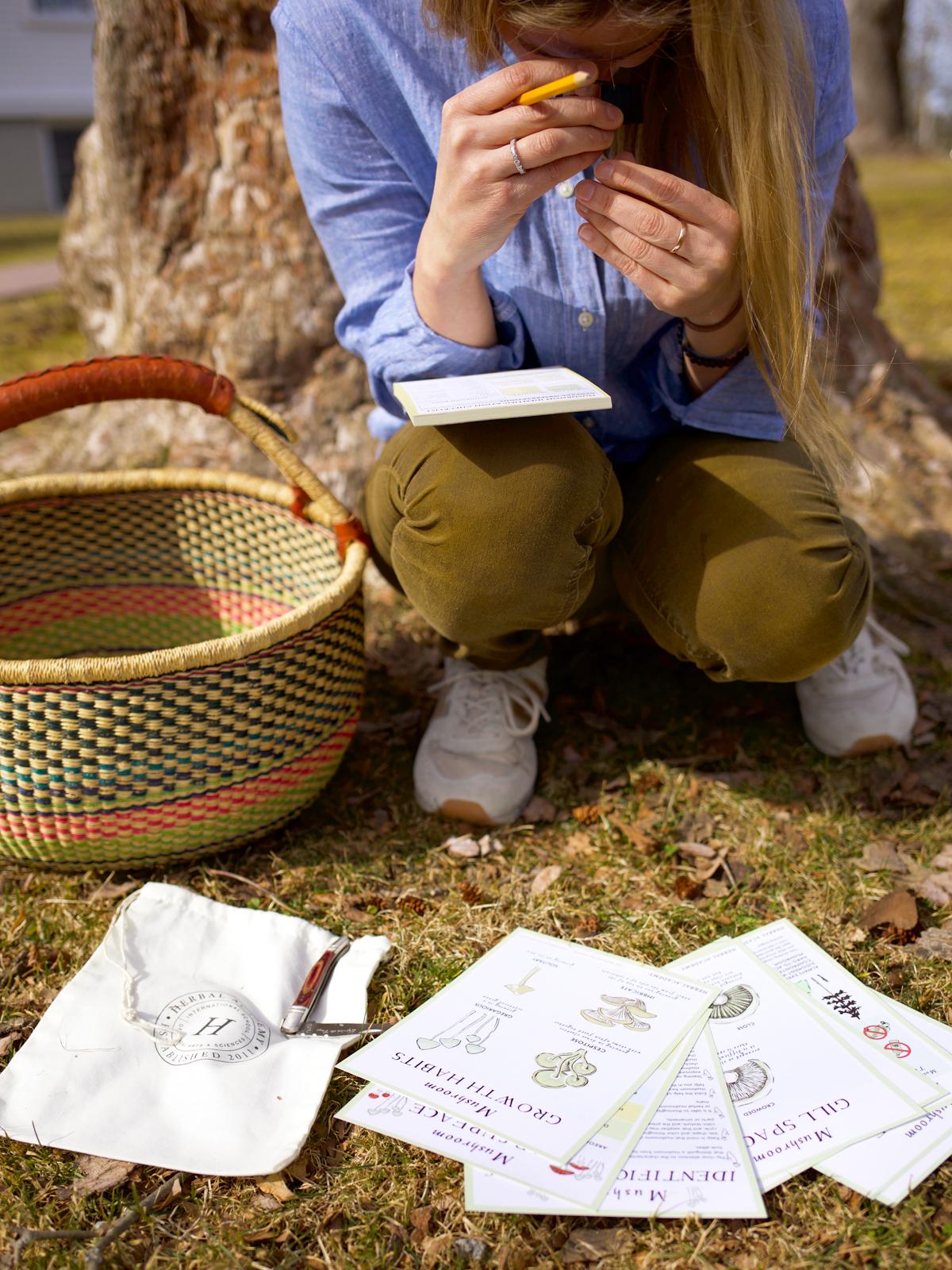 The Mushroom Foraging Kit by Herbal Academy
