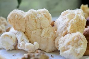 Lion's Mane Mushroom: What You Should Know   Herbal Academy   Lion's mane (Hericium erinaceus) mushroom is most recognized for its important work in supporting brain function, memory, and mood.