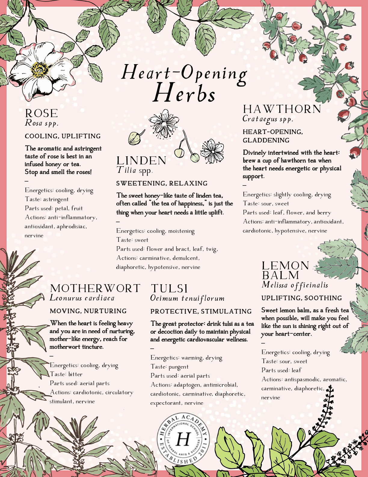 A Heart-Warming Herbalist Day | Herbal Academy | April 17th marks Herbalist Day — a celebration of the many teachers, peers, and herbs that guide an herbalist through their journey.