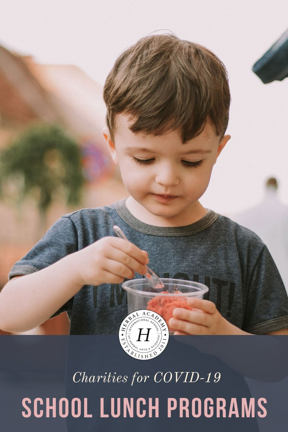 COVID-19 School Lunch Programs: Keeping Children Fed | Herbal Aademy | As a result of COVID-19 school closures, our hearts particularly ache for children who are unable to access free school lunch programs.