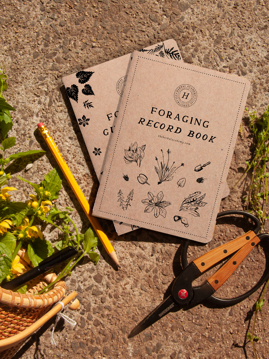 _ Foraging Record Book Cover