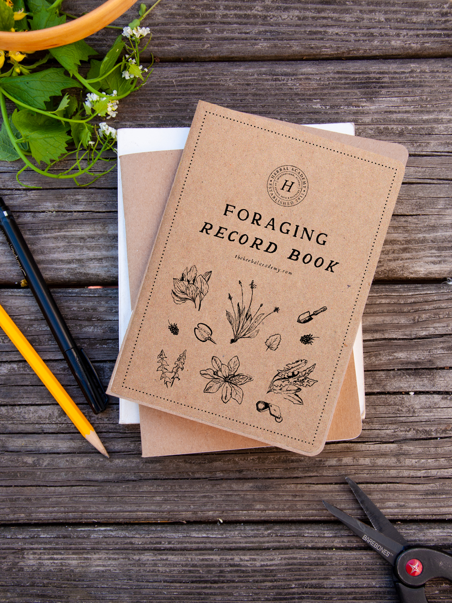 _ Foraging Record Notebook V