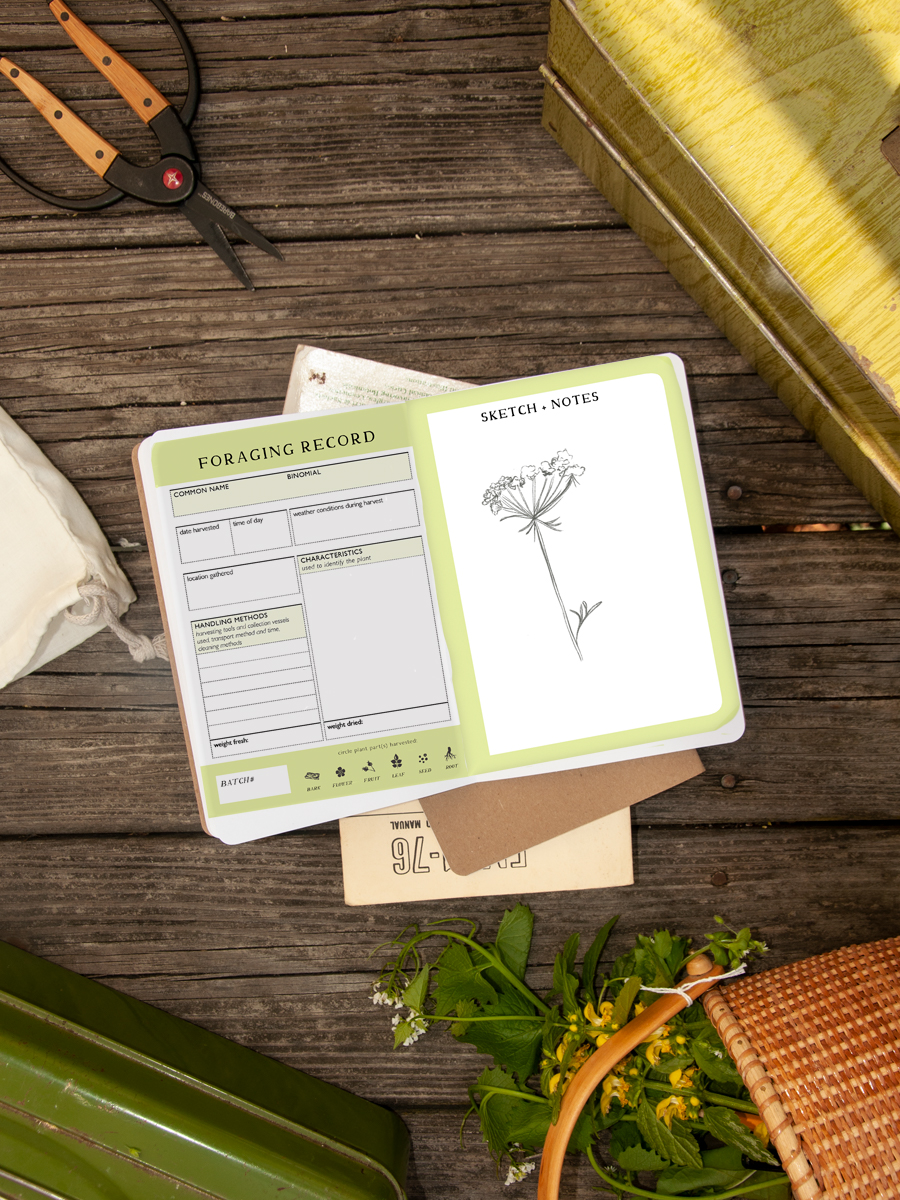 _Foraging Record Notebook s