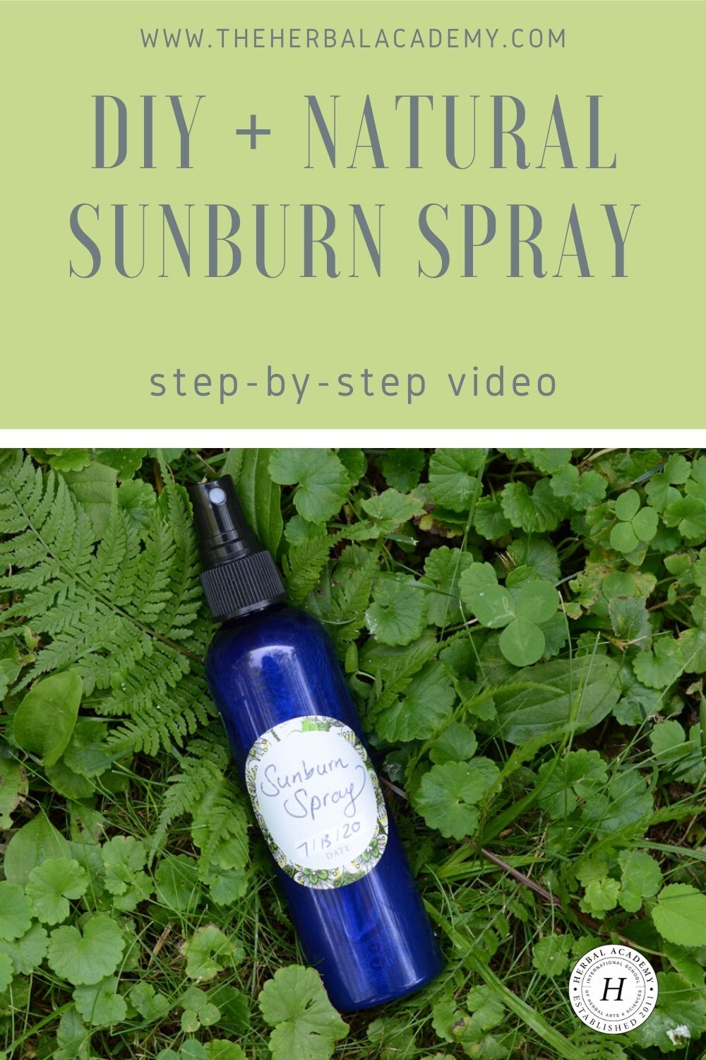 Homemade Sunburn Spray for After-Sun Care (With Video!) | Herbal Academy | In this post, learn how to make a simple, homemade sunburn spray that helps cool discomfort associated with too much sunshine.