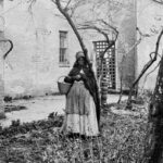 Roots of African American Herbalism: Herbal Use by Enslaved Africans in America | Herbal Academy | African American herbalism is a rich melange of many cultural traditions with deep origins rooted in African history dating back to ancient Egypt.