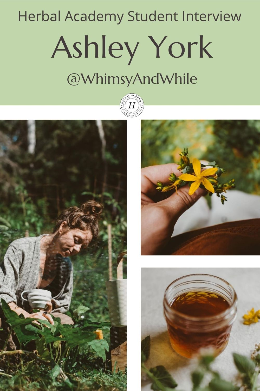 HA Student Feature: Ashley York (@whimsyandwhile) | Herbal Academy | In the second installment of our Student Feature Series, we chatted with Ashley York (@whimsyandwhile) about her herbalism journey.