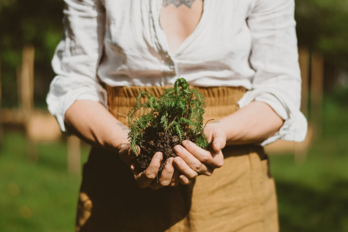 HA Student Feature: Ashley York (@whimsyandwhile)   Herbal Academy   In the second installment of our Student Feature Series, we chatted with Ashley York (@whimsyandwhile) about her herbalism journey.