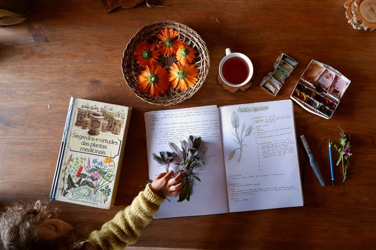 Student Feature: Cat Seixas (@TheOliveTreesAndTheMoon)   Herbal Academy   In the first installment of our Student Feature Series, we chatted with Cat Seixas (@TheOliveTreesAndTheMoon) about how herbalism has impacted her life.