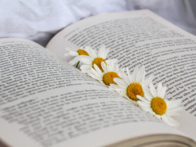 As a Black Herbalist, These are my 3 Favorite Herbalism Books | Herbal Academy | Herbalist and blogger Kendra Payne shares and summarizes her three favorite herbalism books written by black authors.