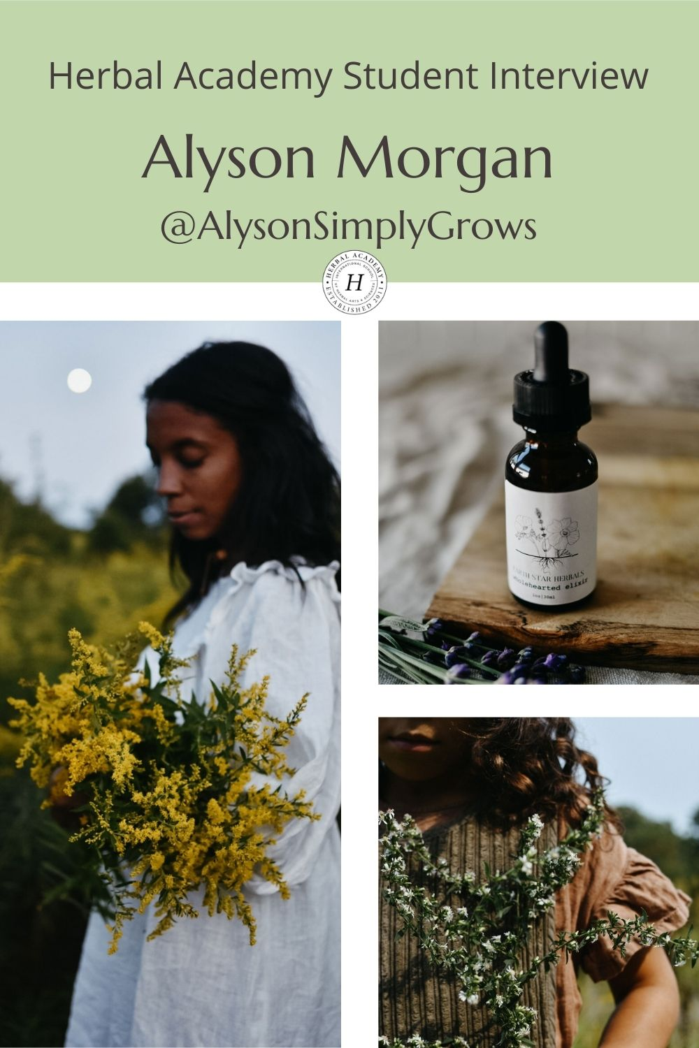Alyson Morgan Pinterest Graphic for Herbal Academy's student feature