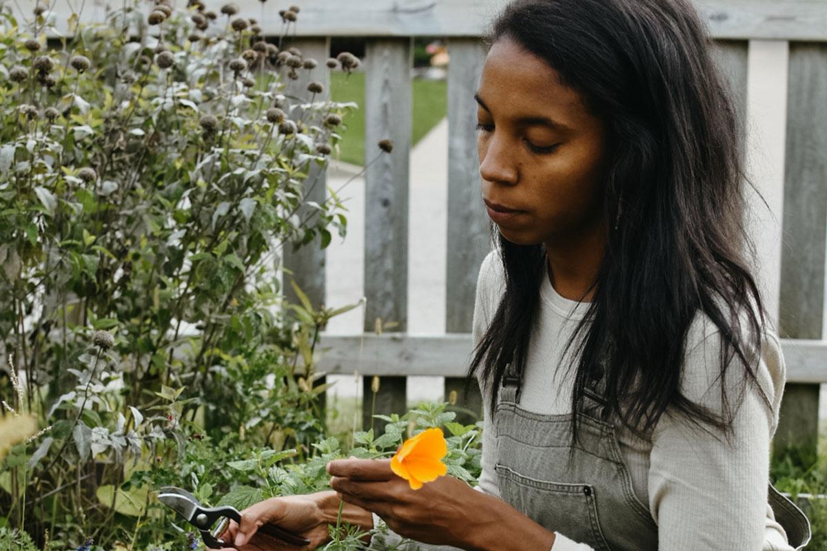 Alyson Morgan - Herbal Academy media team
