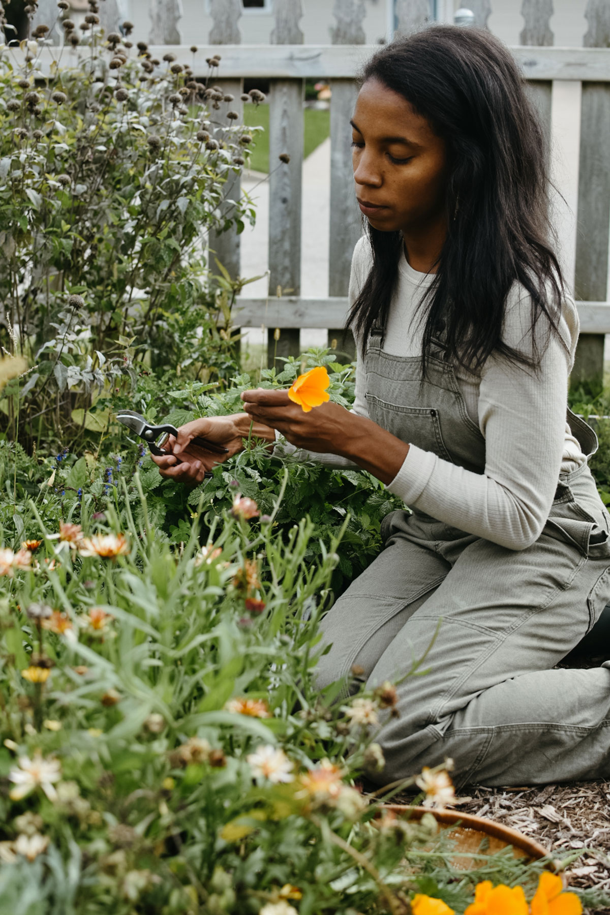 Alyson Morgan picking California poppy in her garden