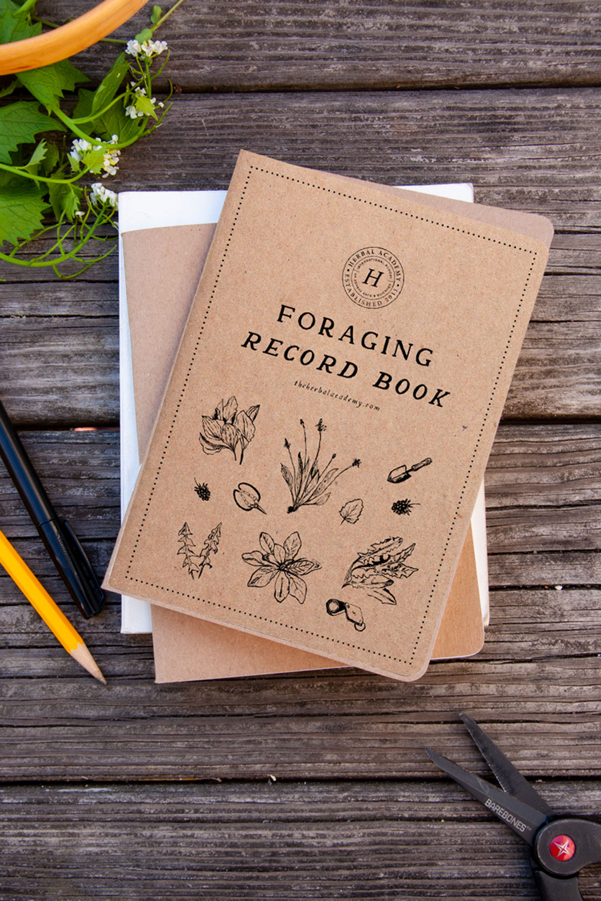 Foraging record book Herbal Academy