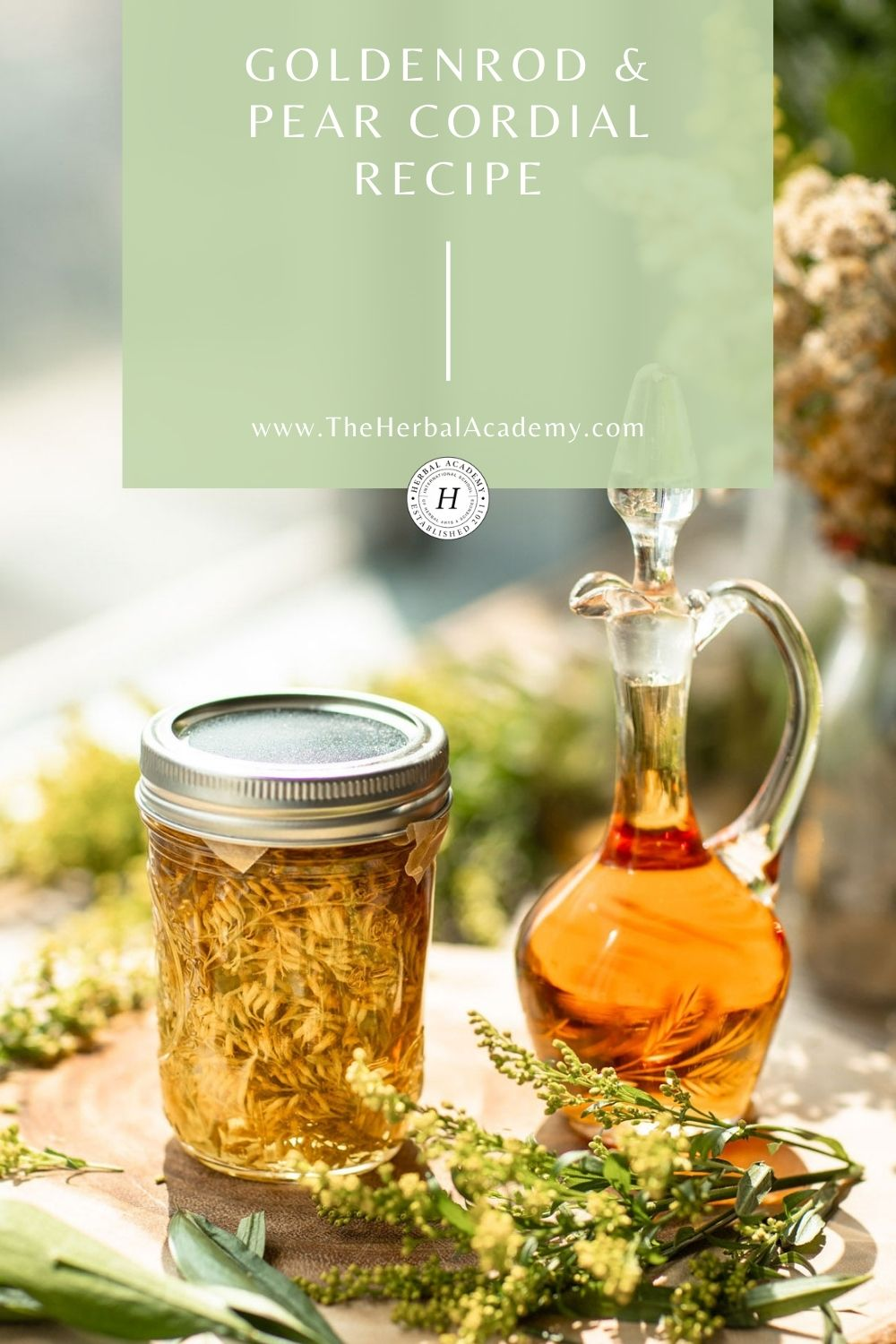Using goldenrod in a cordial recipe - Pinterest Graphic