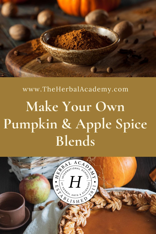 pumpkin pie spice blends Pinterest graphic