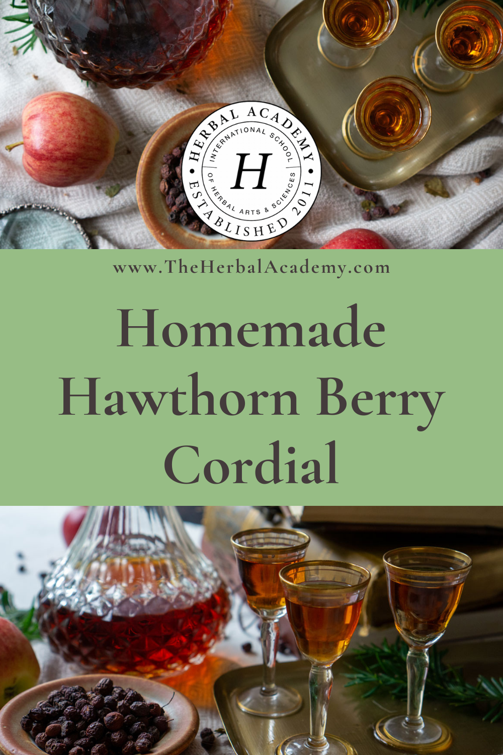 Hawthorn berry cordial Pintrest graphic
