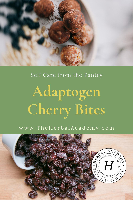 Adaptogen Cherry Bites | Herbal Academy | Pintrest graphic