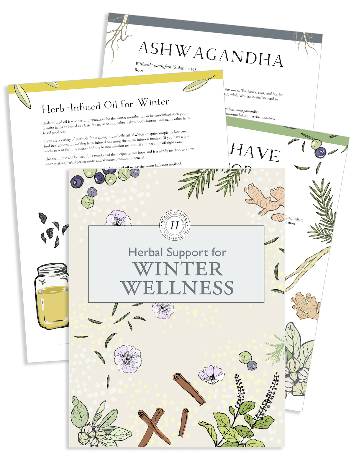 Free Herbal Ebook preview by Herbal Academy -Herbal support for winter wellness ebook