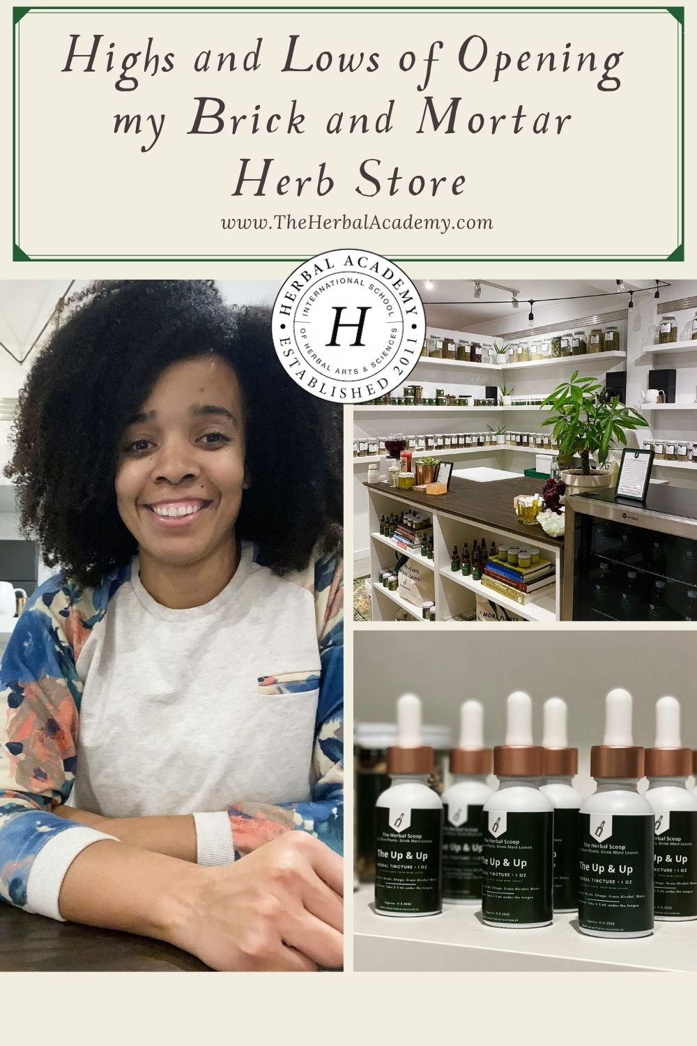 Highs and Lows of Opening by Brick and Mortar Herb Store: Pinterest Graphic