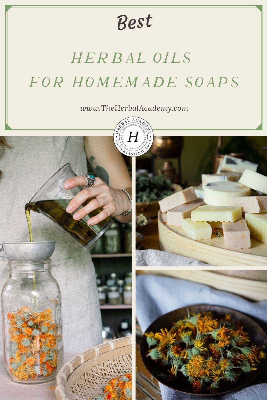 Herbal Oils for Homemade Soaps Pinterest Graphic