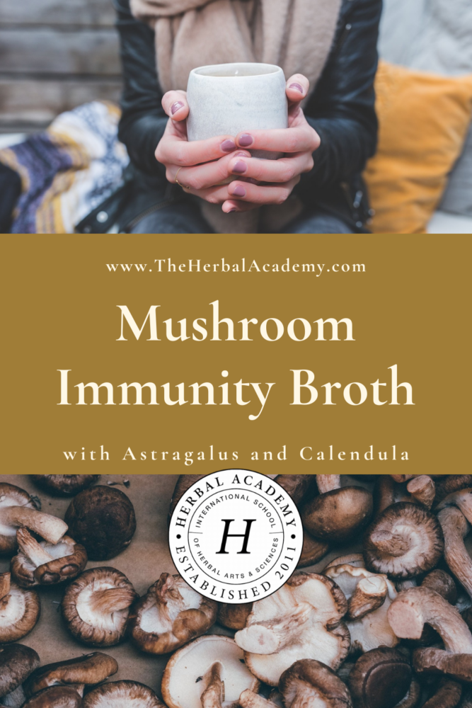 Mushroom Immunity Broth | Herbal Academy | Pintrest graphic