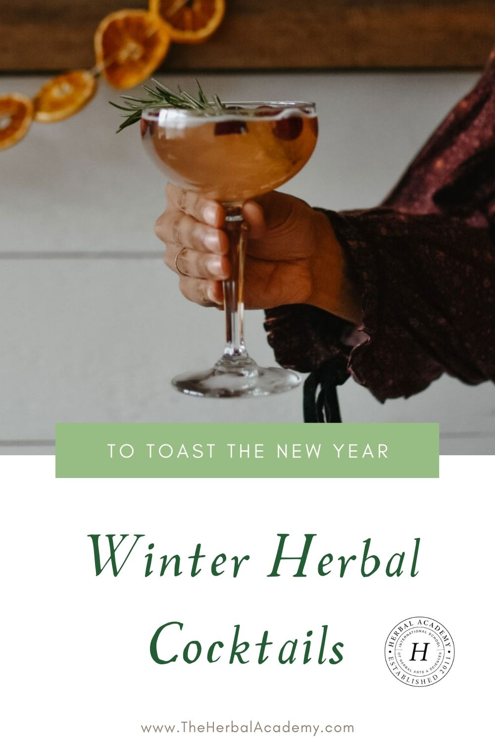 Herbal winter cocktails Pinterest graphic
