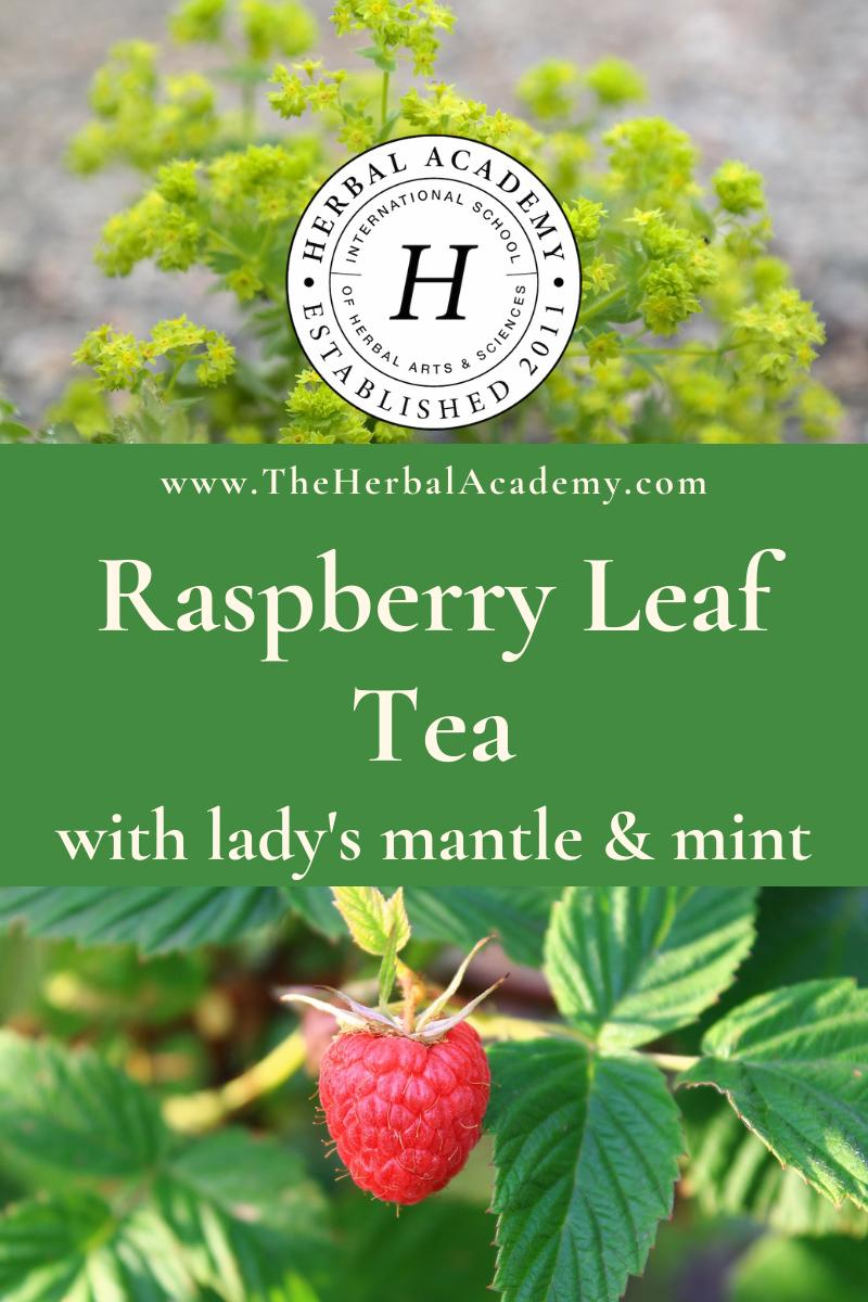 Raspberry Leaf Tea Pinterest Graphic