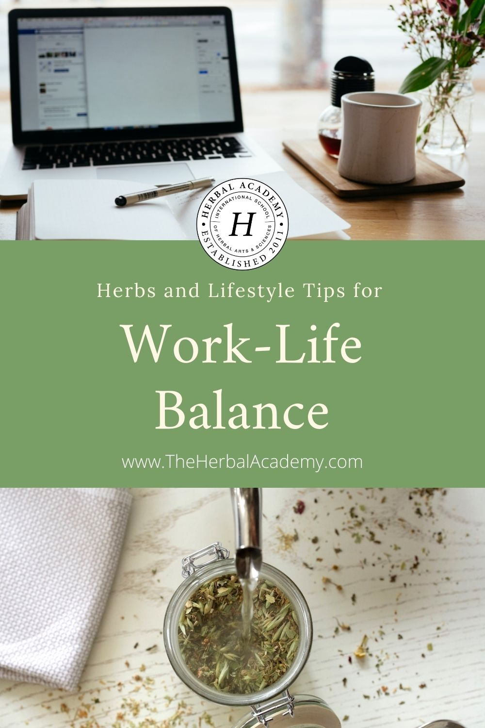Herbs and Lifestyle Tips for Work-Life Balance | Herbal Academy | Living in challenging times can cause long-term wear and tear on the body. Here are creative solutions to ensure a healthy work-life balance!
