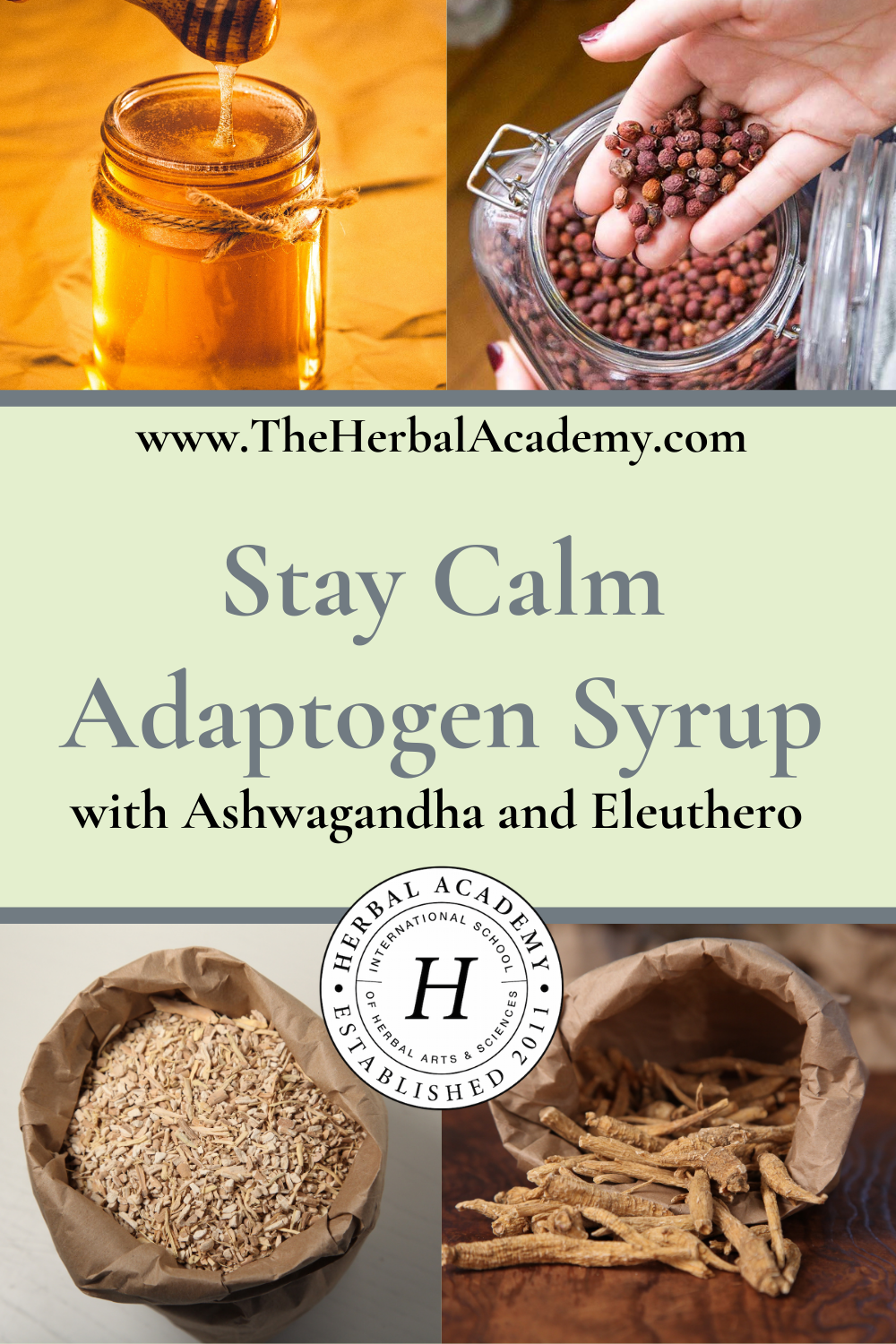 Stay Calm Adaptogen Syrup with Ashwagandha and Eleuthero   Herbal Academy   Pintrest graphic