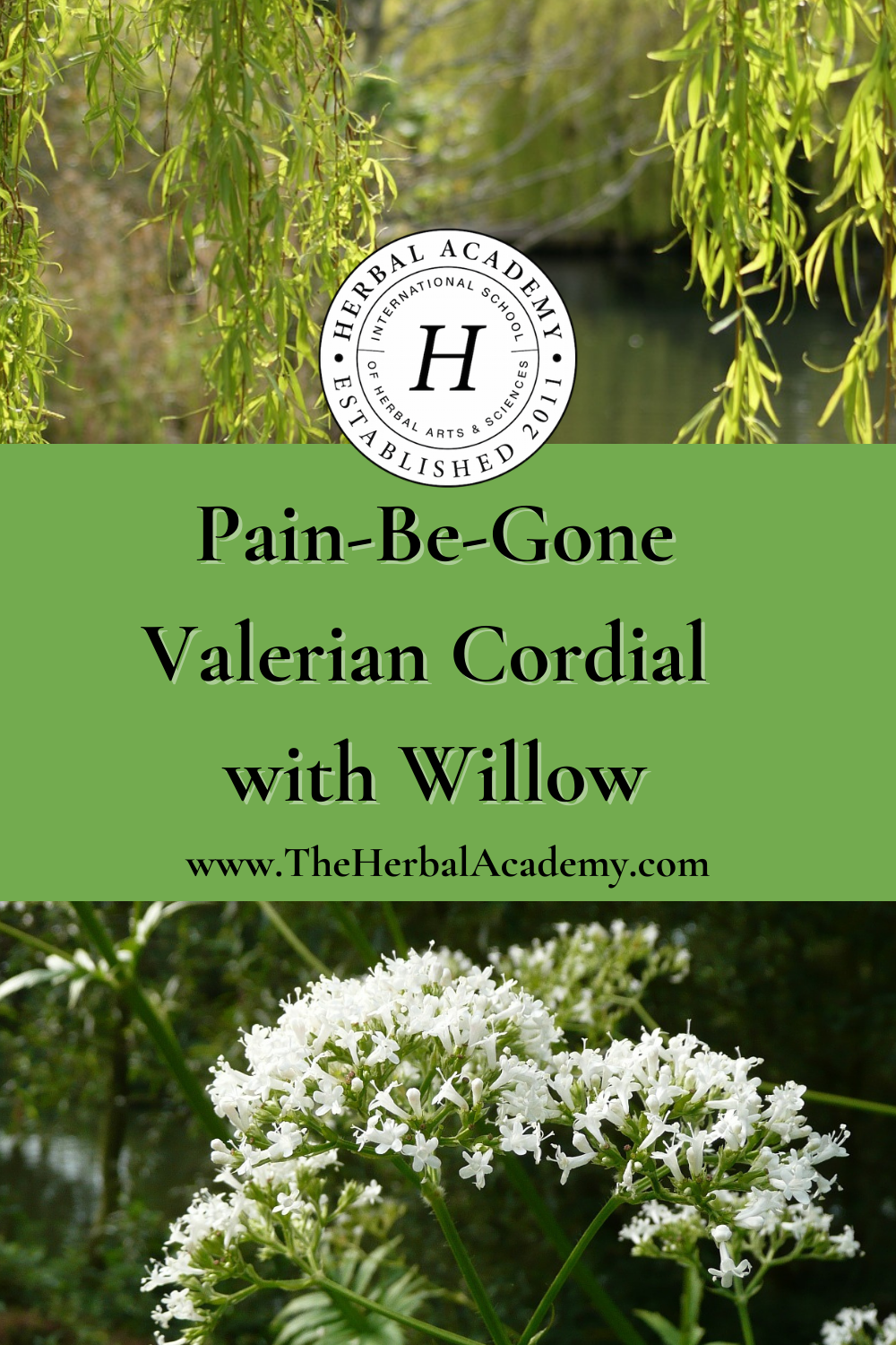 Pain-Be-Gone Valerian Cordial with Willow   Herbal Academy   This valerian cordial contains Valerian officinalis, known for its relaxant properties and its ability to relieve minor aches and pains.
